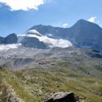 blick-vom-steinernen-lamm-zum-gletscher-des-olperers